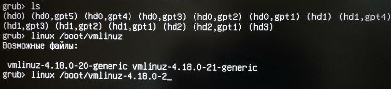 """Рис. 3: Определение доступных ядер и выбор нужного для загрузки с помощью команды """"linux""""."""